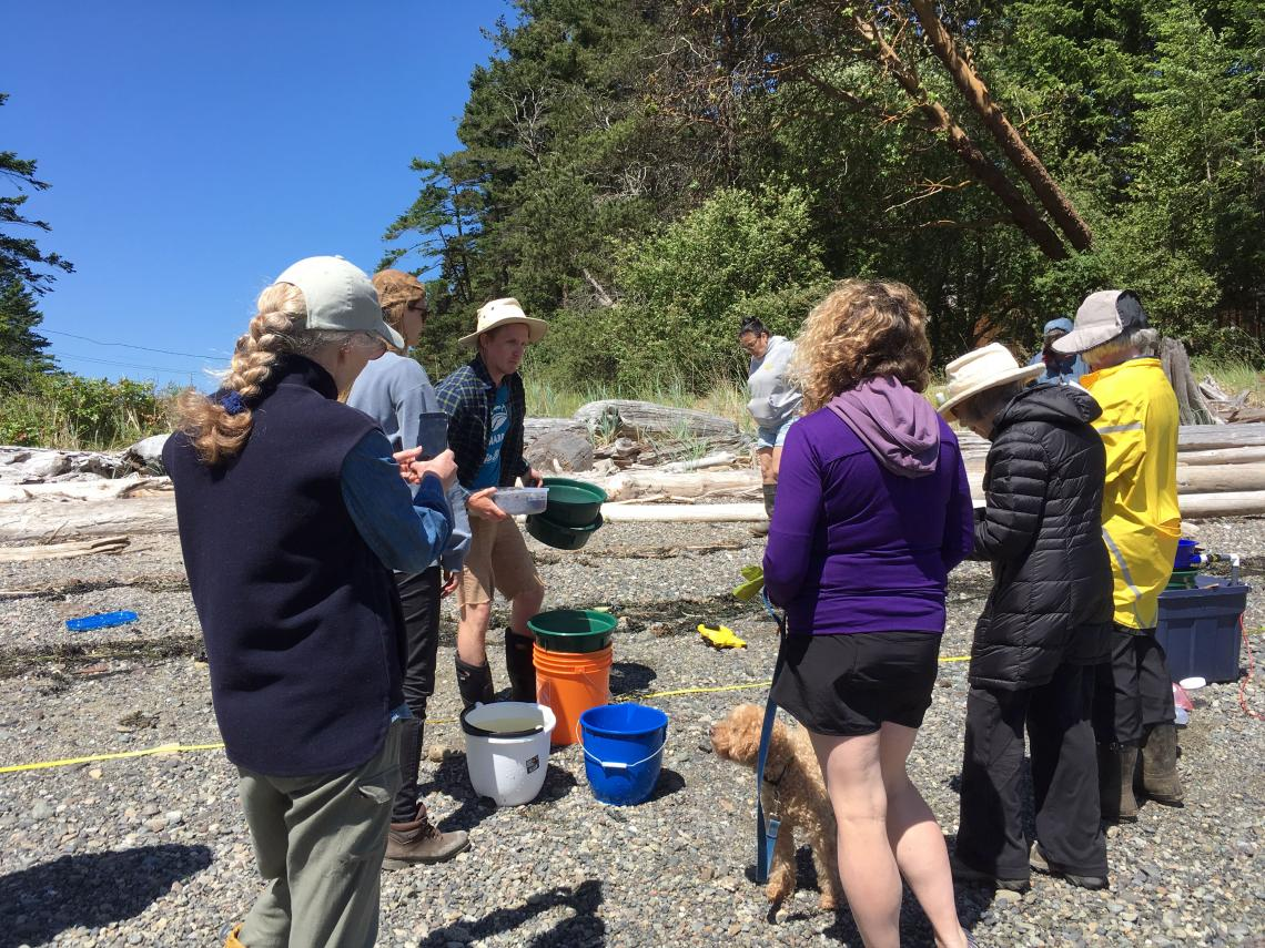 Brian Timmer and Chrissy Schellenberg help teach how to sample for forage fish eggs.