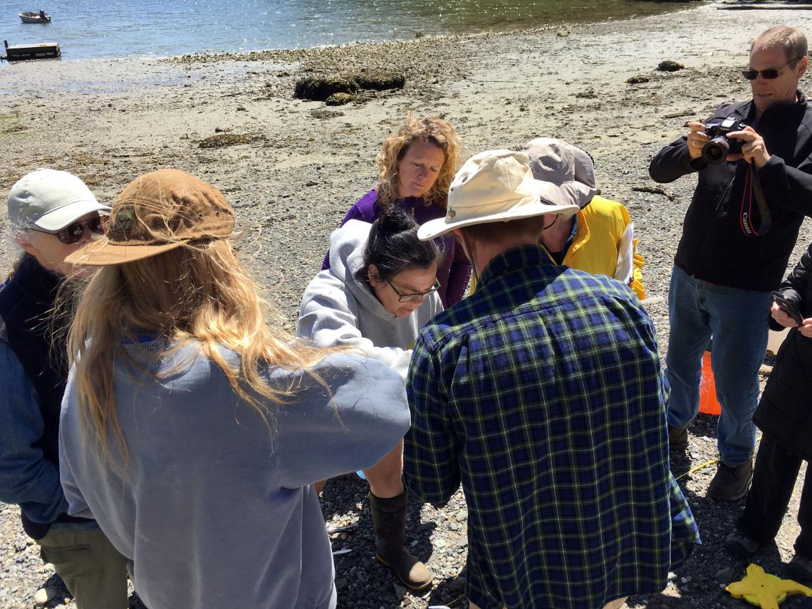 Forage Fish Spawning Habitat Monitoring Program – Gabriola Island 2
