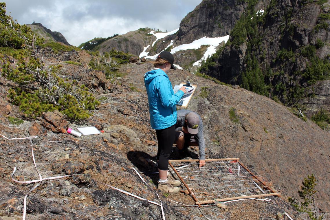 GLORIA Project - Alpine Monitoring Day 3 2
