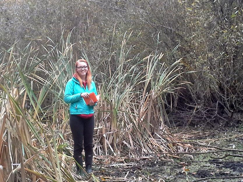 Mapping Parksville's Wetlands 4