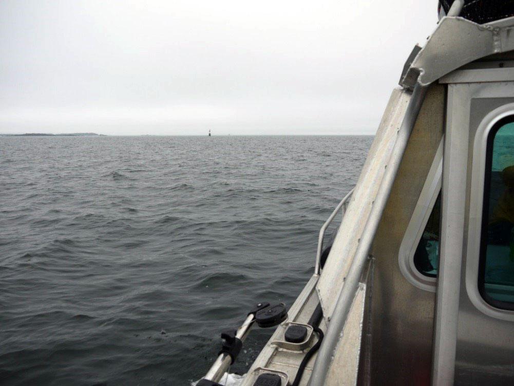 Salish Sea.