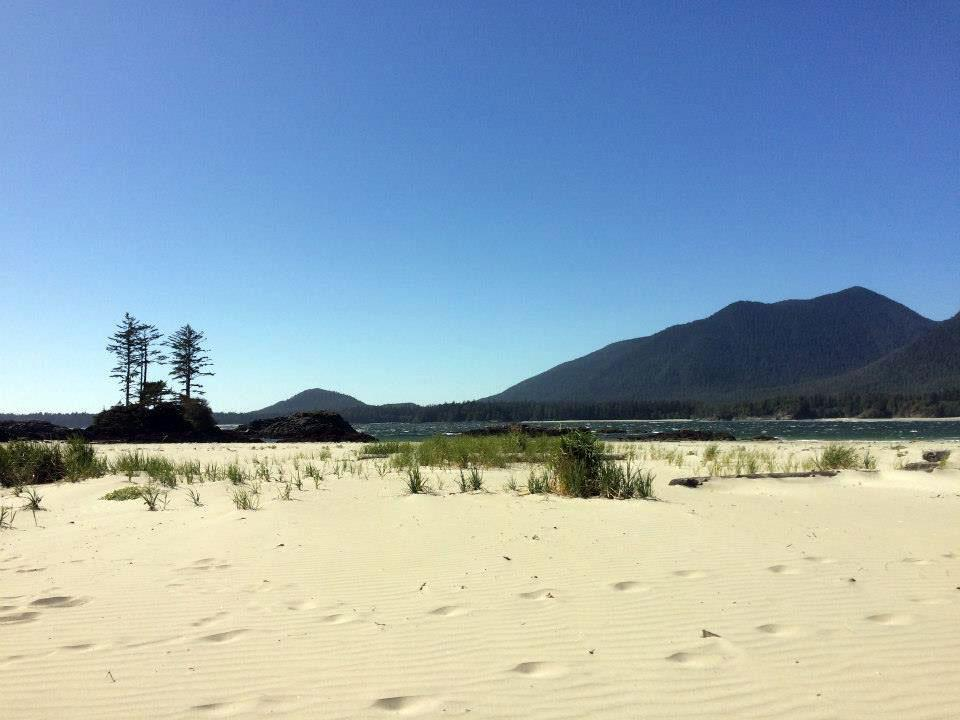 Walking the Wild Side in the Clayoquot Sound Biosphere Reserve 3
