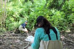 Roxanne Croxall and Ashley Van Acken run a transect through a wetland area.