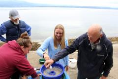 Forage Fish Habitat Monitoring Program – Thetis Island 4