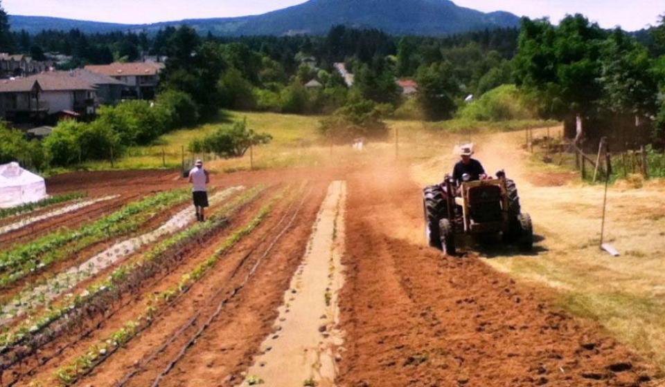 Five Acre Farm Project
