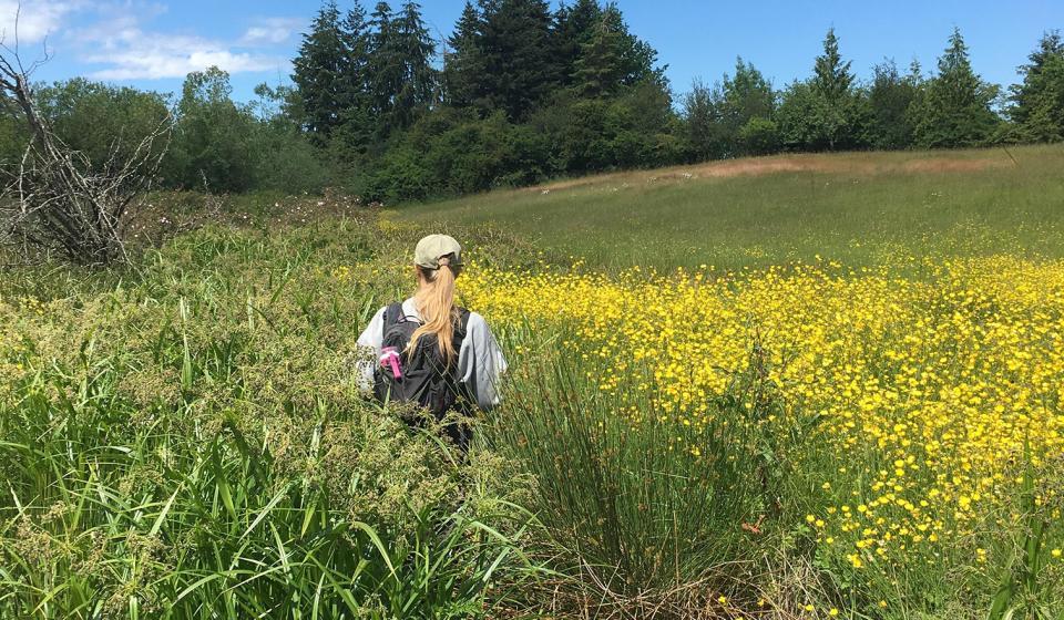 Five Acre Farm Stream Mapping Project