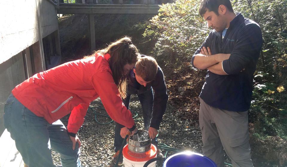 Forage Fish Spawning Habitat Monitoring 2
