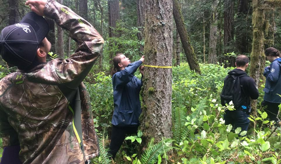 Ecological Research as Education Network (EREN) Permanent Forest Plot Project (PFPP) 2