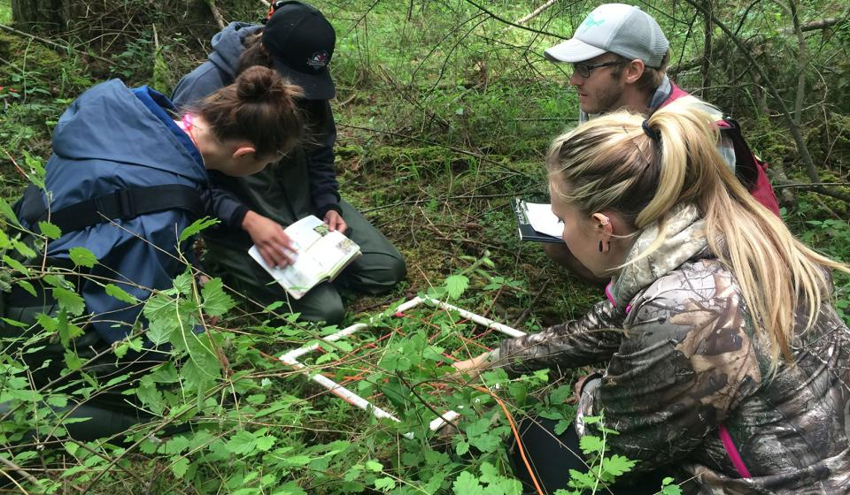 Wetland Mapping in the Regional District of Nanaimo