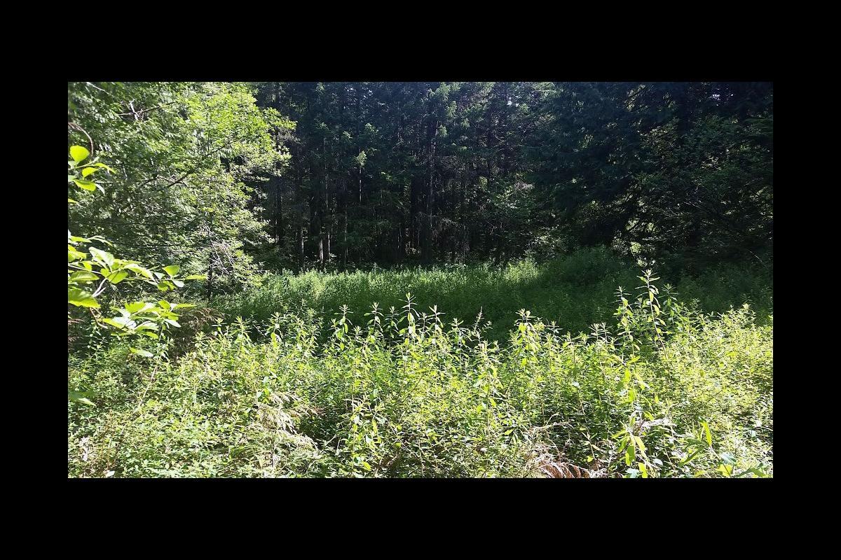 Wetlandkeepers Course 1